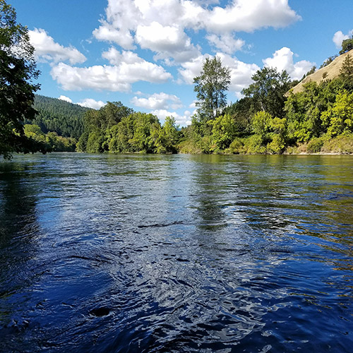 Middle Rogue River Fishing Trips
