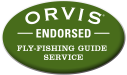 Orvis Endorsment